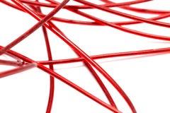 Красный провод на белой предпосылке Стоковые Фото