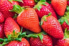 Красный плодоовощ клубники Стоковые Фотографии RF