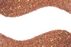 Красный рис Стоковое фото RF
