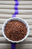 Красный рис Стоковая Фотография