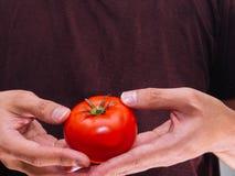 Красный свежий томат Стоковые Фото