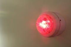 Красный свет Стоковые Фотографии RF