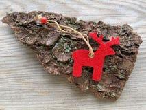 Красный северный олень Стоковая Фотография