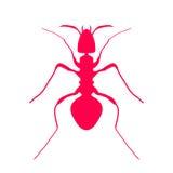 Красный силуэт муравья, дизайна логотипа вектор Стоковое Изображение RF
