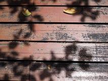 Красный старый запятнанный плиточный пол деревянной доски, тень лист Стоковая Фотография