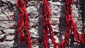 Красный сухой перец на стене акции видеоматериалы