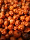 Красный сухой Jujube Стоковые Фото