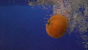 Красный томат завихряется в чистой воде на голубой предпосылке сток-видео