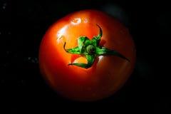 Красный томат на черной предпосылке Стоковое Изображение