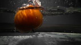 Красный томат падает в аквариум с водой сток-видео