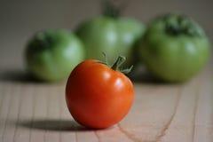 Красный томат перед группой в составе зеленые томаты Стоковые Фото