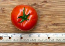 Красный томат с правителем Стоковое Изображение