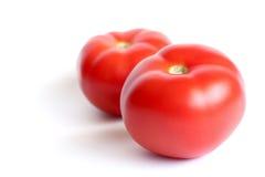красный томат Стоковое Изображение RF