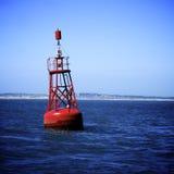 Красный томбуй Стоковая Фотография RF