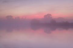Красный туманный восход солнца над спокойным озером Стоковая Фотография RF