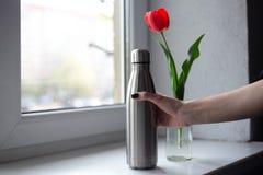 Красный тюльпан со стальной бутылкой на предпосылке окна стоковые фото