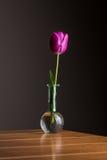 Красный тюльпан в вазе Стоковые Изображения