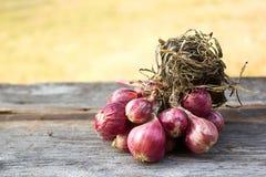 Красный лук на деревянной предпосылке Стоковое Фото