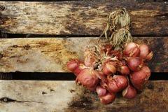 Красный лук на старой древесине Стоковые Изображения