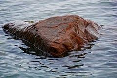 Красный утес в воде на пляже Стоковые Изображения