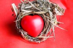 Красный Харт влюбленности в гнезде птицы Стоковое Изображение