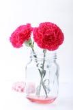 Красный цветок гвоздики в стеклянном опарнике каменщика Стоковые Фотографии RF