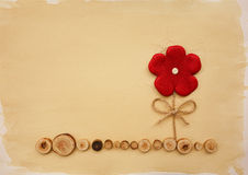 Красный цветок Стоковое фото RF