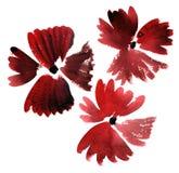 Красный цвет акварели цветет картина впечатления иллюстрация штока