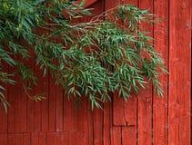 красный цвет амбара Стоковые Фото