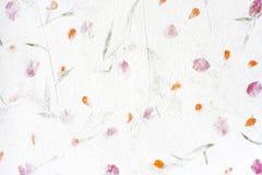 красный цвет бумаги шелковицы цветка Стоковое Изображение