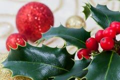 Красный цвет венка рождества стоковое изображение rf