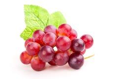 красный цвет виноградины Стоковая Фотография RF