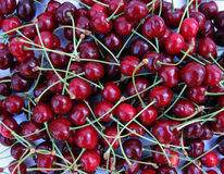 красный цвет вишен зрелый Стоковое фото RF