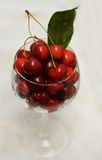 красный цвет вишен стеклянный Стоковое Фото