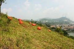 Красный цвет возражает искусство земли Стоковая Фотография RF