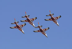 красный цвет гонки быка воздуха Стоковое фото RF