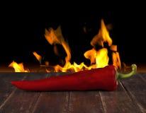 красный цвет горячего перца Стоковые Изображения