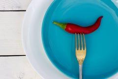 красный цвет горячего перца chili Стиль страны Стоковые Изображения