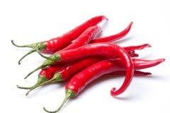 красный цвет горячего перца chili Стоковая Фотография RF