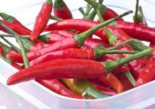 красный цвет горячего перца chili Стоковые Изображения RF
