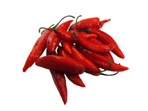 красный цвет горячего перца chili стоковое фото