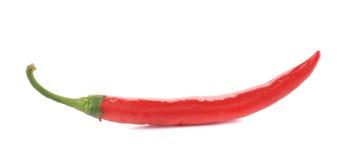 красный цвет горячего перца chili Стоковая Фотография