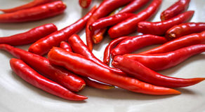 Красный цвет горячих чилей на плите Стоковое Изображение