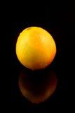 красный цвет грейпфрута Стоковое Фото