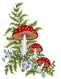 красный цвет гриба Стоковые Изображения