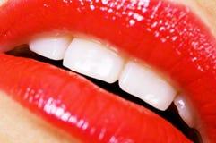 красный цвет губной помады губ Стоковое Фото