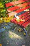 Красный цвет, деревянная скамья в парке в осени Стоковое Фото