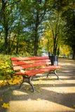 Красный цвет, деревянная скамья в парке в осени Стоковые Изображения RF