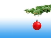 красный цвет ели рождества ветви шарика Стоковое Изображение