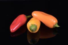 Красный цвет, желтый цвет и оранжевые сладостные перцы изолированные на черноте Стоковое Изображение RF